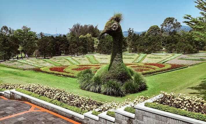 alamat taman bunga nusantara